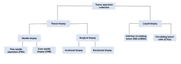 Methods for Obtaining Tumor Specimen