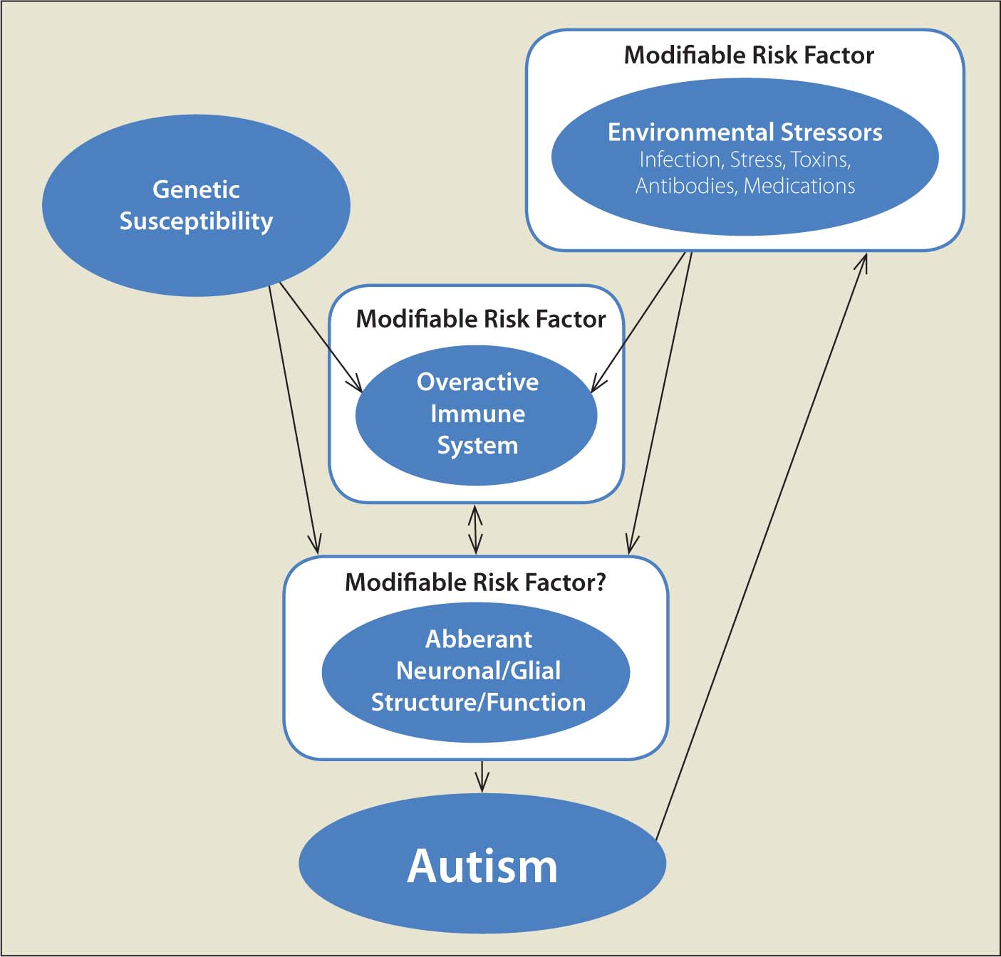 the causes of autism The following information is not meant to prevent, diagnose or treat autism and  should not take the place of personal consultation, as appropriate, with a.