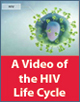A Video of the HIV Life Cycle